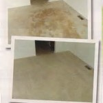 carpet cleaning Riverside
